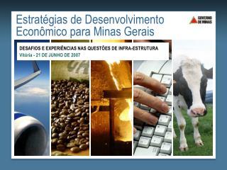 Estrat gias de Desenvolvimento Econ mico para Minas Gerais