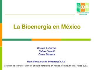 La Bioenerg a en M xico