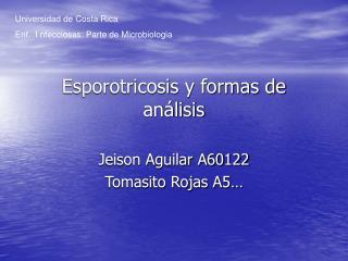 Esporotricosis y formas de an lisis
