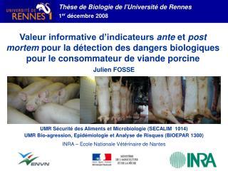 Th se de Biologie de lUniversit  de Rennes 1er d cembre 2008