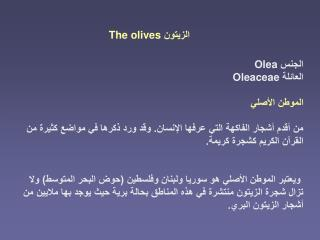 The olives
