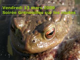 Vendredi 13 mars 2009  Soir e Grenouilles sur les routes