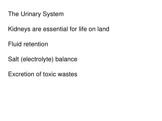 The Urinary System  Kidneys are essential for life on land  Fluid retention  Salt electrolyte balance  Excretion of toxi