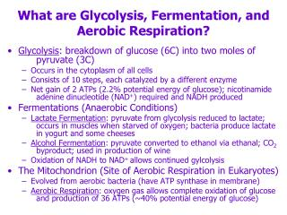 What are Glycolysis, Fermentation, and Aerobic Respiration