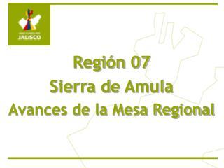 Regi n 07  Sierra de Amula Avances de la Mesa Regional
