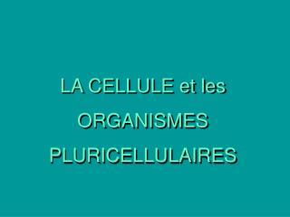 LA CELLULE et les  ORGANISMES PLURICELLULAIRES