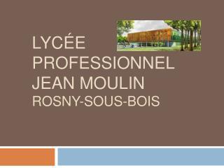 LYC E PROFESSIONNEL JEAN MOULIN ROSNY-SOUS-BOIS