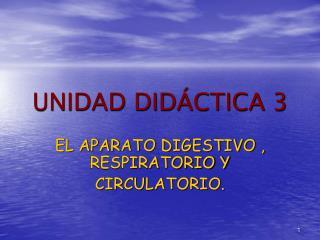 UNIDAD DID CTICA 3