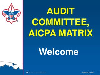 AUDIT COMMITTEE, AICPA MATRIX