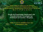 MINIST RIO DA CI NCIA E TECNOLOGIA INSTITUTO NACIONAL DE PESQUISAS DA AMAZ NIA ESCRIT RIO DE PROPRIEDADE INTELECTUAL E N