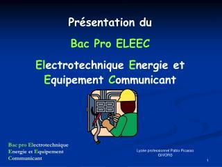 Bac pro Electrotechnique Energie et Equipement Communicant