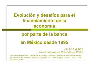Evoluci n y desaf os para el financiamiento de la econom a  por parte de la banca  en M xico desde 1995