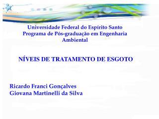 Universidade Federal do Esp rito Santo Programa de P s-gradua  o em Engenharia Ambiental
