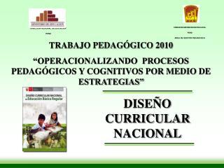 TRABAJO PEDAG GICO 2010  OPERACIONALIZANDO  PROCESOS PEDAG GICOS Y COGNITIVOS POR MEDIO DE ESTRATEGIAS