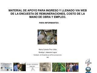 MATERIAL DE APOYO PARA INGRESO Y LLENADO VIA WEB DE LA ENCUESTA DE REMUNERACIONES, COSTO DE LA MANO DE OBRA Y EMPLEO.