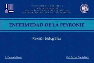 Revisi n bibliogr fica    Dr. Fernando Osorio                                                                      Prof.