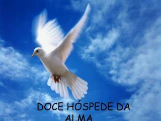 DOCE H SPEDE DA ALMA....