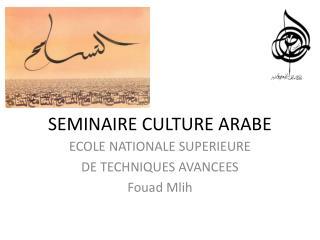 SEMINAIRE CULTURE ARABE