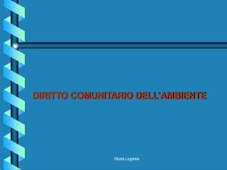 DIRITTO COMUNITARIO DELL AMBIENTE