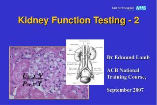 Kidney Function Testing - 2