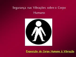 Seguran a  nas  Vibra  es  sobre o  Corpo  Humano