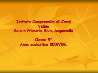 Istituto Comprensivo di Casal Velino  Scuola Primaria Bivio Acquavella   Classe 5   Anno scolastico 2007