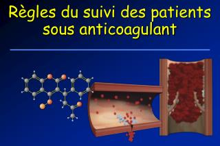 R gles du suivi des patients sous anticoagulant