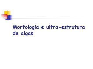 Morfologia e ultra-estrutura de algas