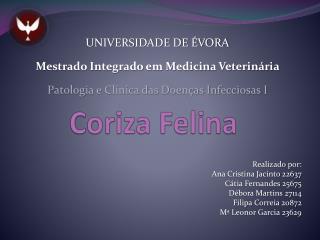 Coriza Felina