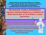 NECROLISIS TOXICA EPIDERMICA: aspectos fisiopatol gicos y cuidados de Enfermer a que se le brindan a estos pacientes.