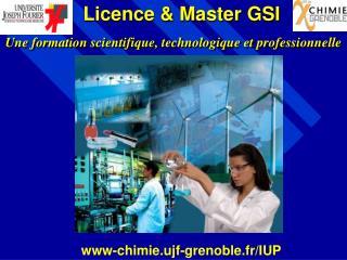 Licence  Master GSI