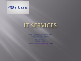 Ortus -IT services