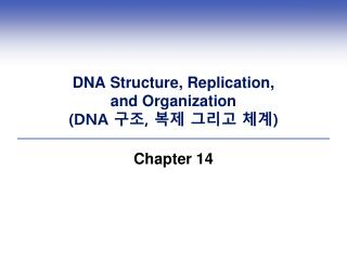 DNA Structure, Replication,  and Organization  DNA ,