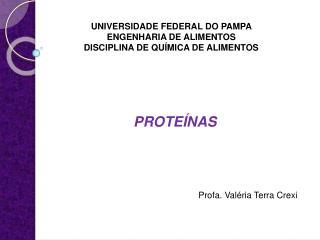 UNIVERSIDADE FEDERAL DO PAMPA  ENGENHARIA DE ALIMENTOS DISCIPLINA DE QU MICA DE ALIMENTOS