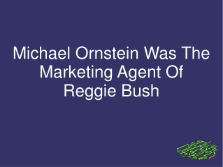 Michael Ornstein Was The Marketing Agent Of Reggie Bush