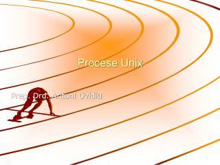Procese Unix