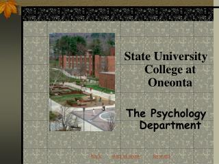 The Psychology Department