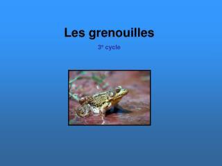 Les grenouilles 3e cycle
