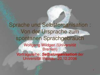 Sprache und Selbstorganisation : Von der Ursprache zum spontanen Sprachgebrauch