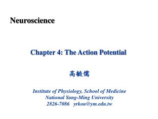 Chapter 4: The Action Potential