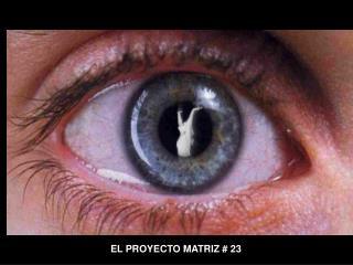 EL PROYECTO MATRIZ  23