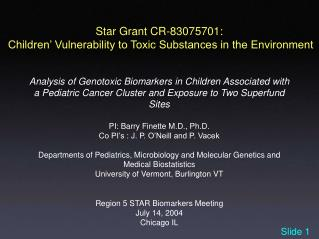 Star Grant CR-83075701:  Children  Vulnerability to Toxic Substances in the Environment