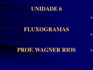 UNIDADE 6   FLUXOGRAMAS   PROF. WAGNER RIOS