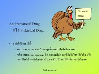 Antitrematodal Drug   Flukicidal Drug     narrow spectrum:     broad spectrum