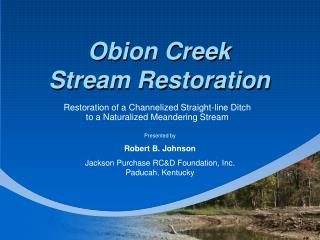 Obion Creek Stream Restoration