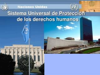 Sistema Universal de Protecci n de los derechos humanos