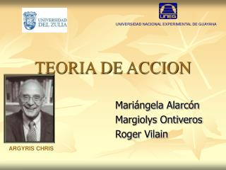 TEORIA DE ACCION