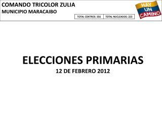 ELECCIONES PRIMARIAS 12 DE FEBRERO 2012