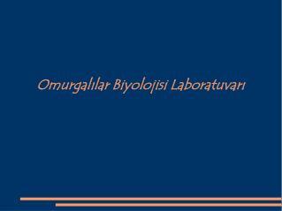 Omurgalilar Biyolojisi Laboratuvari