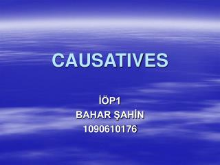 CAUSATIVES